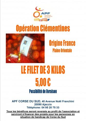 Affiche vente clémentines 2014.jpg
